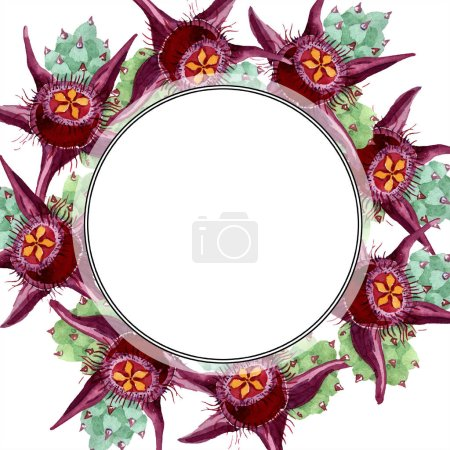 Duvalia flowers. Watercolor background illustration. Frame border ornament round. Aquarelle hand drawing succulent plants.