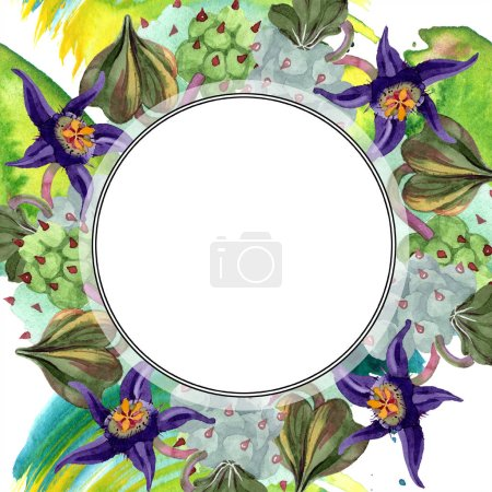 Duvalia flowers. Watercolor background illustration. Frame border ornament round. Aquarelle hand drawing succulent plants.