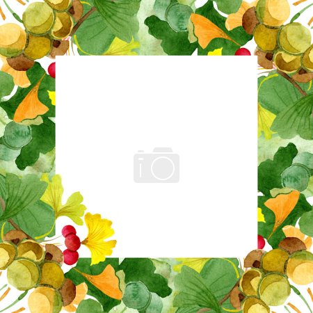 Photo for Beautiful green ginkgo biloba with leaves isolated on white. Watercolor background illustration. Watercolour drawing fashion aquarelle isolated on white. Frame border ornament. - Royalty Free Image