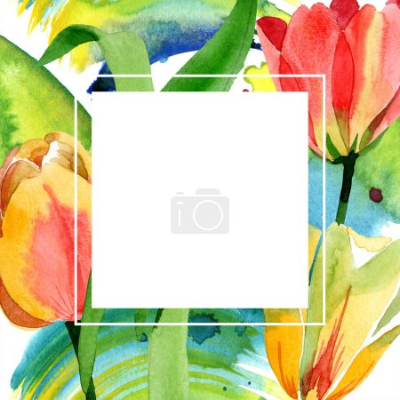 Photo for Beautiful yellow tulips with green leaves isolated on white. Watercolor background illustration. Watercolour drawing fashion aquarelle. Frame border ornament. - Royalty Free Image