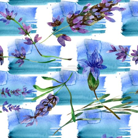 Photo for Beautiful purple lavender flowers isolated on white. Watercolor background illustration. Watercolour drawing fashion aquarelle. Seamless background pattern. - Royalty Free Image