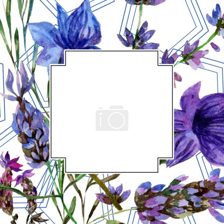 Photo for Beautiful purple lavender flowers isolated on white. Watercolor background illustration. Watercolour drawing fashion aquarelle. Frame border ornament. - Royalty Free Image
