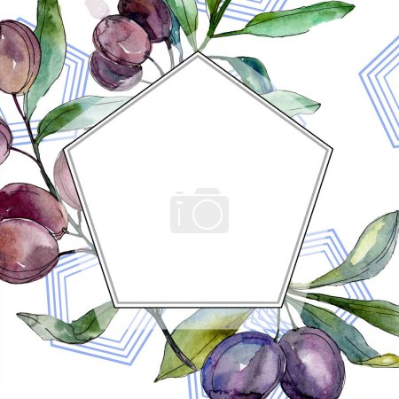 Photo for Black olives on branches with green leaves. Botanical garden floral foliage. Watercolor illustration on white background. Polygonal border. - Royalty Free Image