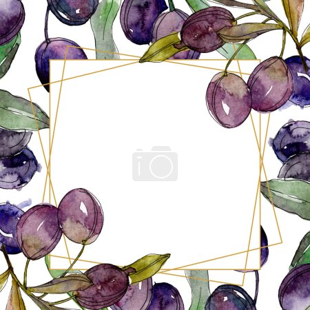 Photo for Olives on branches with green leaves. Botanical garden floral foliage. Watercolor illustration on white background. Frame golden crystal. - Royalty Free Image