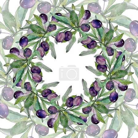 Olives on branches with green leaves. Botanical garden floral foliage. Watercolor illustration on white background. Round frame.