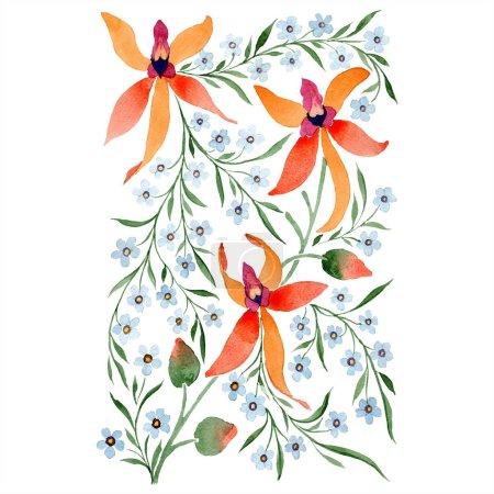 Photo pour Fleurs bleus et orange. Aquarelle, dessin de fond avec des orchidées et myosotis. - image libre de droit