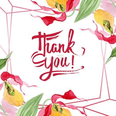 Foto de Orquídeas del deslizador de señora ilustración acuarela marco aislado en blanco con muchas gracias Letras - Imagen libre de derechos