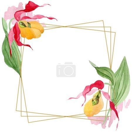 Foto de Orquídeas del deslizador de señora ilustración acuarela marco aislado en blanco con copia espacio - Imagen libre de derechos