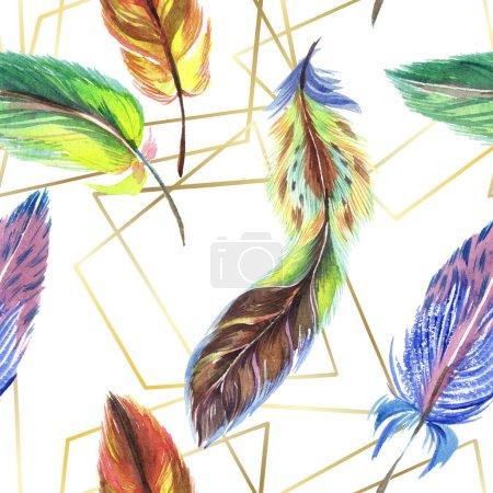 Photo pour Plumes colorées avec des lignes abstraites isolées sur blanc. Modèle de fond sans couture. Texture d'impression papier peint tissu . - image libre de droit