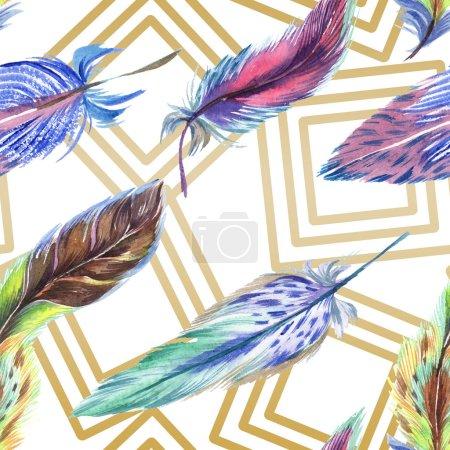 Photo pour Plumes colorées avec des lignes sur fond blanc. Modèle de fond sans couture. Texture d'impression papier peint tissu . - image libre de droit