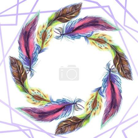 Photo pour Plumes colorées. Plume d'oiseau aquarelle d'aile isolé. Plume d'aquarelle pour fond, texture, motif wrapper, cadre ou une bordure. Bordure cadre - image libre de droit