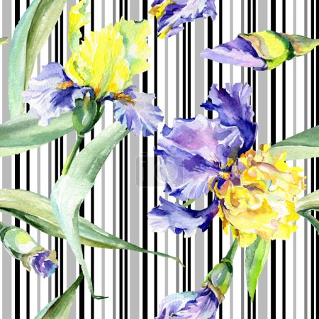 Photo pour Purple Iris jaune fond. Les fleurs botaniques dessinés à la main. Aquarelle de fond illustration ensemble. Aquarelle de mode dessin aquarelle. - image libre de droit