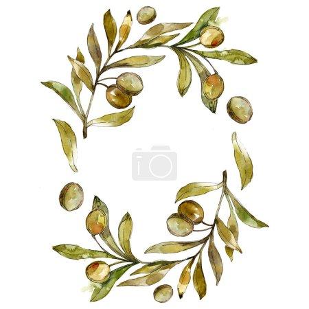 Photo pour Cadre avec olives vertes aquarelle fond illustration ensemble. Dessin aquarelle de mode aquarelle isolé. - image libre de droit