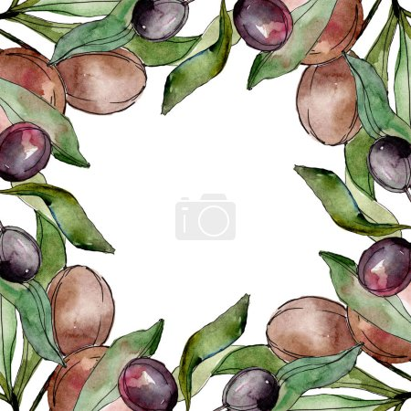 Frame with Black olives watercolor background. Watercolour drawing set.