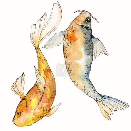 Photo for Watercolor aquatic underwater colorful tropical fish set. Red sea and exotic fishes inside: Goldfish. Aquarelle elements for background, texture. Isolated goldenfish illustration element. - Royalty Free Image