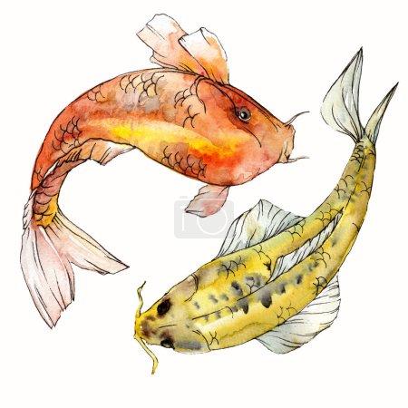 Photo pour Coffret aquarelle aquatique sous-marin coloré des poissons tropicaux. Mer rouge et des poissons exotiques à l'intérieur: poisson rouge. Éléments d'aquarelle pour le fond, texture. Élément d'illustration isolé aimant - image libre de droit