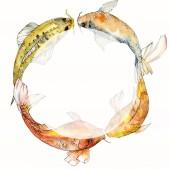 """Постер, картина, фотообои """"Набор акварели водной подводный разноцветных тропических рыб. Красное море и экзотических рыб внутри: Золотая рыбка. Акварель элементы для фона, текстуры, шаблон оболочки. Площадь орнамент границы кадра."""""""