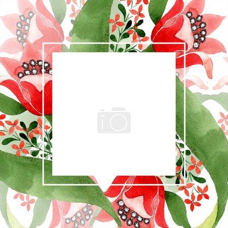 Photo pour Fleur botanique florale rouge. Feuille sauvage de printemps fleur sauvage isolée. Ensemble d'illustration de fond aquarelle. Aquarelle dessin mode aquarelle isolé. Cadre bordure ornement carré . - image libre de droit