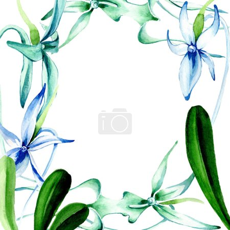 Photo pour Orchidée Rare bleue. Fleur botanique floral. Wildflower de feuille de printemps sauvage isolé. Aquarelle de fond illustration ensemble. Aquarelle de mode dessin aquarelle isolé. Place de cadre bordure ornement. - image libre de droit