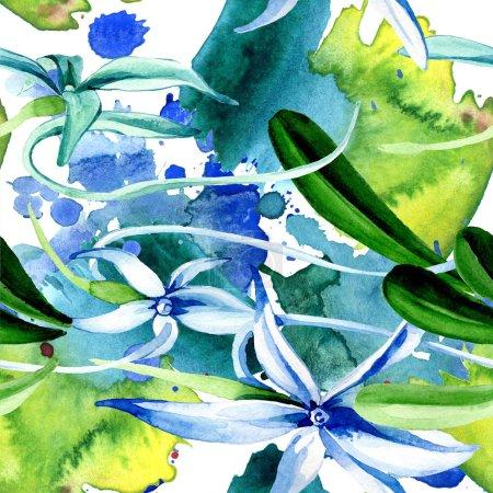 Photo pour Orchidée Rare bleue. Fleur botanique floral. Feuille de printemps sauvage. Illustration aquarelle ensemble. Aquarelle de mode dessin aquarelle isolé. Motif de fond transparente. Impression texture de tissu papier peint. - image libre de droit