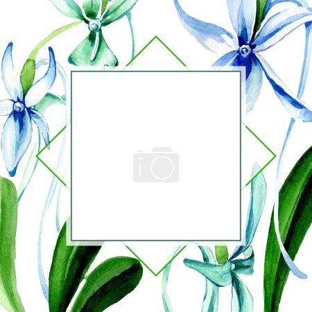 Photo pour Orchidée rare bleue. Fleur botanique florale. Feuille sauvage de printemps fleur sauvage isolée. Ensemble d'illustration de fond aquarelle. Aquarelle dessin mode aquarelle isolé. Cadre bordure ornement carré . - image libre de droit