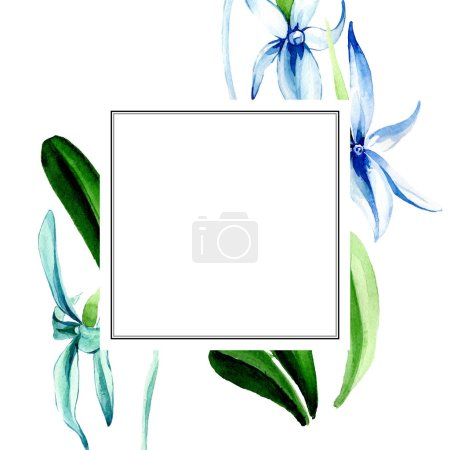 Photo for Blue Rare orchid. Floral botanical flower. Wild spring leaf wildflower isolated. Watercolor background illustration set. Watercolour drawing fashion aquarelle isolated. Frame border ornament square. - Royalty Free Image