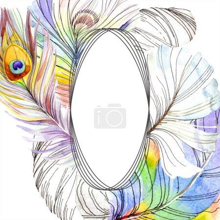 Photo pour Plume d'oiseau colorée de l'aile isolée. Plume Aquarelle pour cadre ou bordure. Ensemble d'illustration de fond aquarelle. Aquarelle dessin mode aquarelle. Cadre bordure ornement carré . - image libre de droit