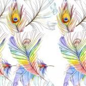 """Постер, картина, фотообои """"Красочные птицы перья крыла изолированы. Акварель фон иллюстрации набора. Акварель рисования моды акварель изолированы. Бесшовный фон узор. Обои для рабочего стола ткань печати текстуры"""""""
