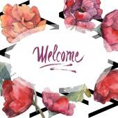 """Постер, картина, фотообои """"Красный Мак цветочные ботанические цветок. Дикие весны листьев Уайлдфлауэр изолированы. Акварель фон иллюстрации набора. Акварель рисования моды акварель изолированы. Площадь орнамент границы кадра."""""""