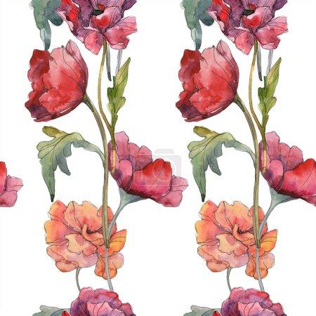Photo pour Fleur botanique floral rouge coquelicot. Feuille de printemps sauvage. Illustration aquarelle ensemble. Aquarelle de mode dessin aquarelle isolé. Motif de fond transparente. Impression texture de tissu papier peint. - image libre de droit