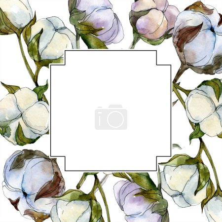 Cotton floral botanical flower. Wild spring leaf wildflower isolated. Watercolor background illustration set. Watercolour drawing fashion aquarelle isolated. Frame border ornament square.