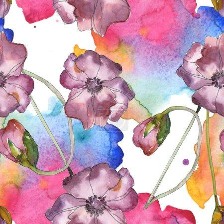 Photo pour Rouge pavot floral botanique fleur pourpre. Feuille de printemps sauvage isolé. Illustration aquarelle ensemble. Dessin aquarelle de mode aquarelle. Motif de fond transparente. Impression texture de tissu papier peint - image libre de droit