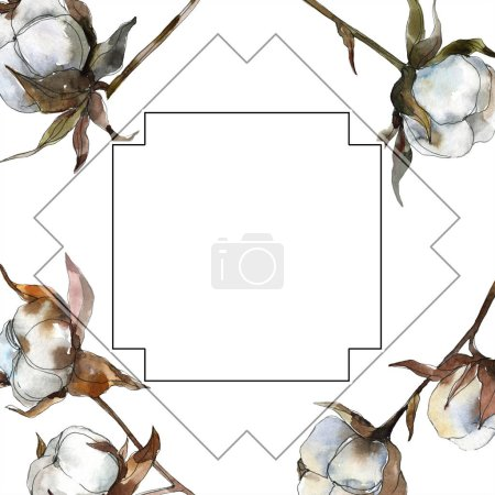 Cotton floral botanical flower. Watercolor background illustration set. Watercolour drawing fashion aquarelle isolated. Frame border ornament square.