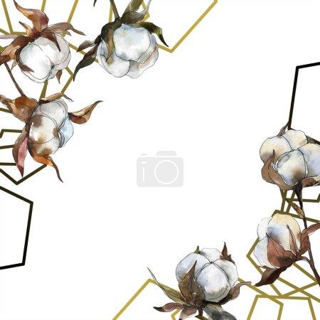 Photo pour Fleur botanique florale en coton. Ensemble d'illustration de fond aquarelle. Aquarelle dessin mode aquarelle isolé. Cadre bordure ornement carré . - image libre de droit