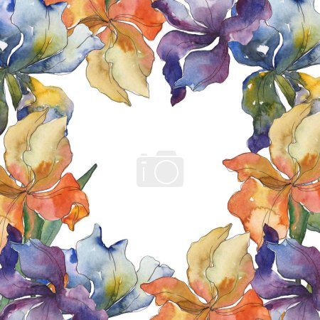 Photo for Purple, red, orange and blue irises floral botanical flower. Wild spring leaf wildflower. Watercolor background set. Watercolour drawing fashion aquarelle isolated. Frame border ornament square. - Royalty Free Image