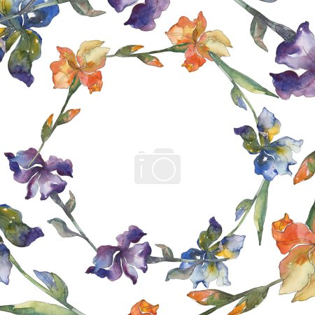 Photo for Orange, blue and purple irises. Floral botanical flower. Wild spring leaf isolated. Watercolor background illustration set. Watercolour drawing fashion aquarelle. Frame border ornament square. - Royalty Free Image