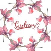 """Постер, картина, фотообои """"Красный Ирис. Ботанический цветочные цветок. Дикие весны листьев Уайлдфлауэр изолированы. Акварель фон иллюстрации набора. Акварель рисования моды акварель изолированы. Площадь орнамент границы кадра."""""""