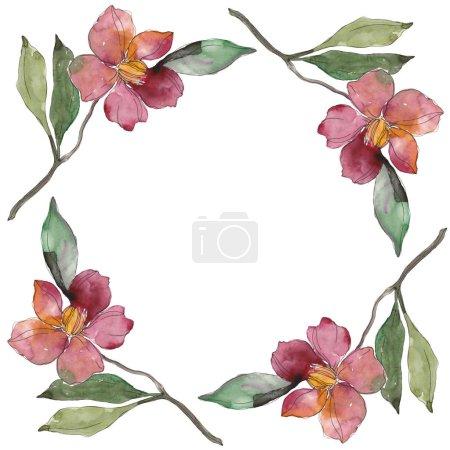 Foto de Flores de Camelia roja y púrpura. Conjunto de ilustración de fondo de acuarela. Ornamento de la frontera del marco con espacio de copia. - Imagen libre de derechos