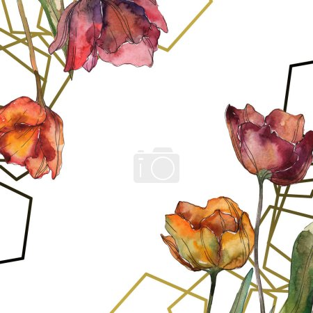 Amapolas aisladas de Borgoña con hojas. Juego de ilustración en acuarela. Marco ornamento borde con espacio de copia .