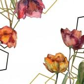 """Постер, картина, фотообои """"Бордовый изолированных Маки с листьями. Набор акварели иллюстрации. Орнамент границы кадра с копией пространства."""""""