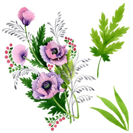 Pink and purple poppies isolated on white. Watercolor background illustration set.