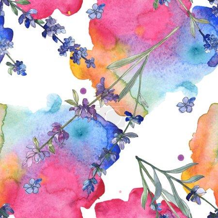 Photo pour Fleur botanique de violet lavande. Wildflower de feuille de printemps sauvage. Illustration aquarelle ensemble. Aquarelle de mode dessin aquarelle isolé. Motif de fond transparente. Impression texture de tissu papier peint - image libre de droit
