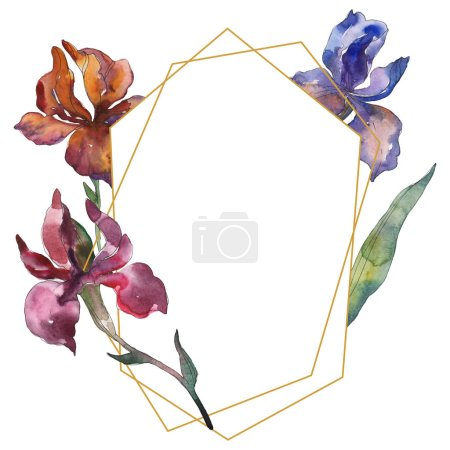 Photo for Purplr ahd red irises floral botanical flower. Wild spring leaf wildflower. Watercolor background illustration set. Watercolour drawing fashion aquarelle isolated. Frame border ornament square. - Royalty Free Image