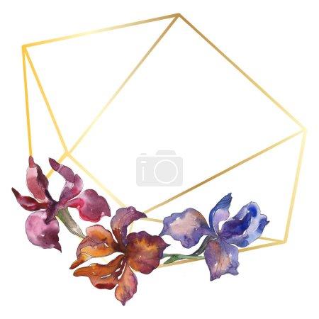 Photo pour Purplr ahd rouge Iris botanique fleur floral. Wildflower de feuille de printemps sauvage. Aquarelle de fond illustration ensemble. Aquarelle de mode dessin aquarelle isolé. Place de cadre bordure ornement. - image libre de droit