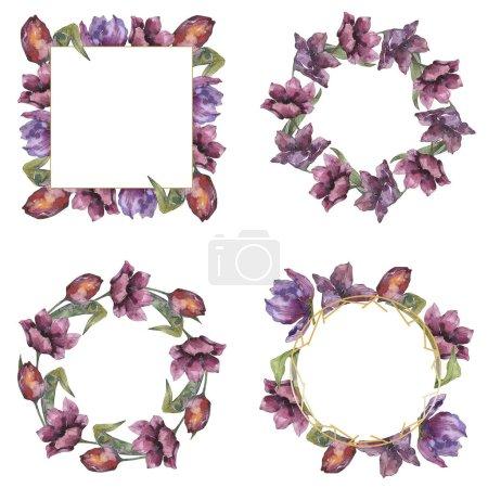 Foto de Flores botánicas florales tulipán púrpura. Wildflower de hoja de primavera salvaje aislado. Conjunto de ilustración de fondo de acuarela. Acuarela dibujo moda aquarelle aislado. Plaza de ornamento de frontera marco. - Imagen libre de derechos