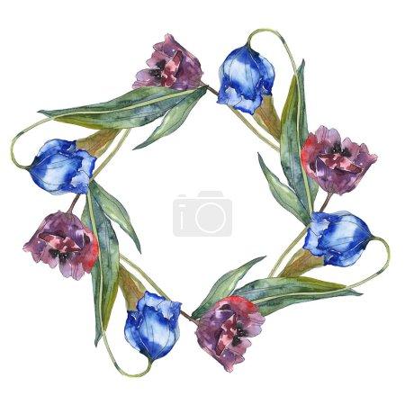 Photo pour Violet et bleu tulipes aquarelle fond illustration ensemble. Ornement de bordure cadre avec espace copie. - image libre de droit