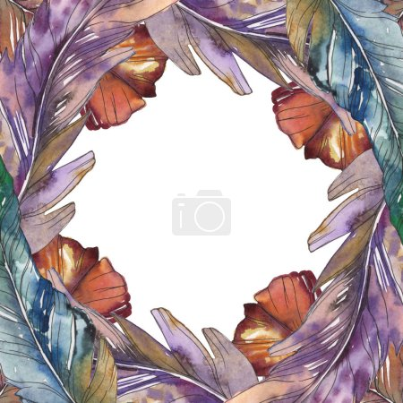 Photo for Bird feather from wing isolated. Watercolor background illustration set. Watercolour drawing fashion aquarelle isolated. Frame border ornament square. - Royalty Free Image
