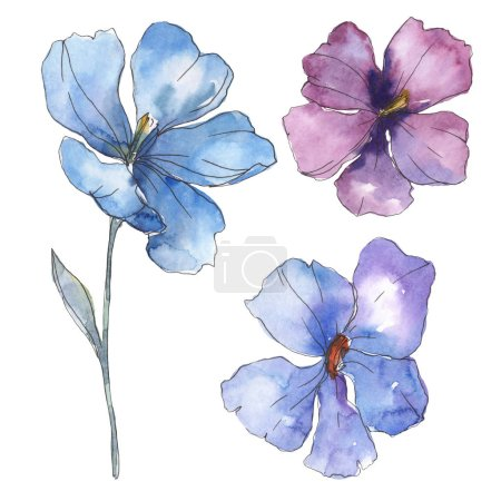 Photo pour Du lin bleu violet. Fleur botanique florale. Feuille sauvage de printemps fleur sauvage isolée. Ensemble d'illustration de fond aquarelle. Aquarelle dessin mode aquarelle. Élément d'illustration isolé en lin . - image libre de droit