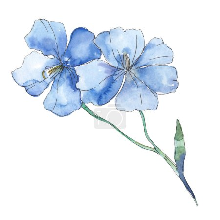 Photo for Blue purple flax. Floral botanical flower. Wild spring leaf wildflower isolated. Watercolor background illustration set. Watercolour drawing fashion aquarelle. Isolated flax illustration element. - Royalty Free Image
