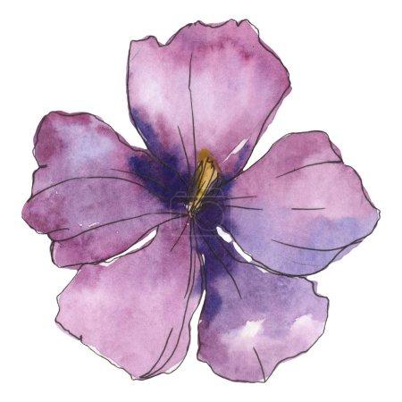 Photo pour Lin violet bleu. Fleur botanique floral. Wildflower de feuille de printemps sauvage isolé. Aquarelle de fond illustration ensemble. Dessin aquarelle de mode aquarelle. Élément isolé illustration lin. - image libre de droit